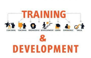 Training and Skills Development